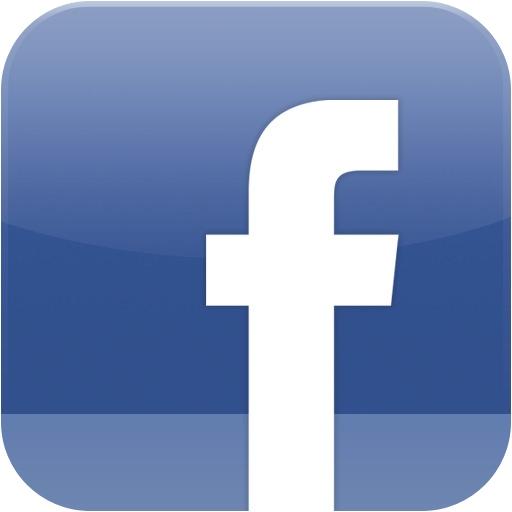 Wordpress Facebook plugin: cannot save App ID and Secret ... Facebook App Logo