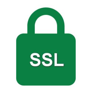 SSL TLS Lock Icon
