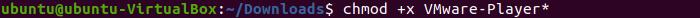 Linux Ubuntu Terminal - Exec Bit chmod